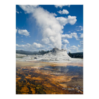 Print - Castle Geyser, Yellowstone National Park,