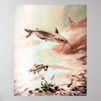 Print Channel Catfish