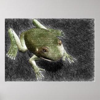 ~Print~ coloreado de la rana del lápiz Póster