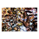 Print - Dark & BrIght Fall Foliage