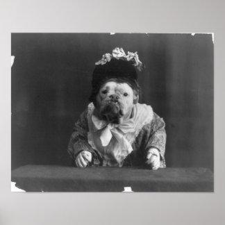"""Print """"Dog dressed in more flower bedecked bonnet"""