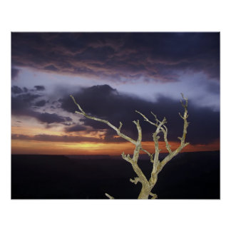 Print - Grand Canyon Sunset