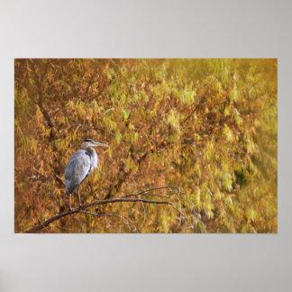 Print: Heron In The Sun