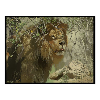 Print - King of the Jungle
