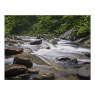 Print - Little Pigeon River, Great Smoky Mtns. NP,