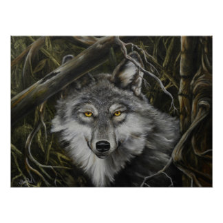 Print of Watchful Eyes Wolf Picture