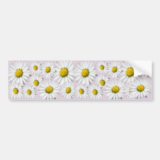 Print of yellow and white daisies bumper sticker
