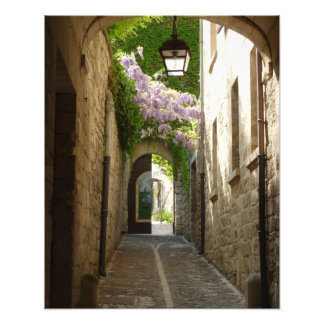 PRINT -  St Remy France Photographic Print