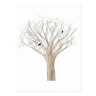 Printemps, pájaros de la primavera tarjetas postales