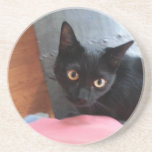 "Priscilla cat coaster<br><div class=""desc"">Priscilla cat</div>"