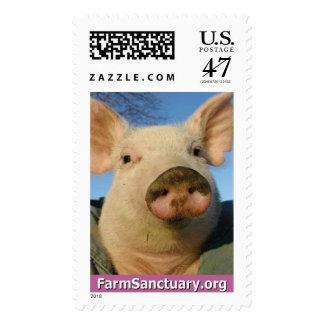 Priscilla Noelle el cerdo Estampilla
