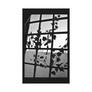Prism and Leaves Canvas Print