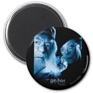 Prisoner of Azkaban - Spanish 1 Magnet