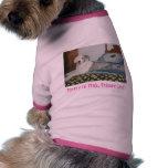 ¡Prissee-Lee bonito!! Camisa De Perro