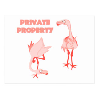 Private Property Flamingos Postcard