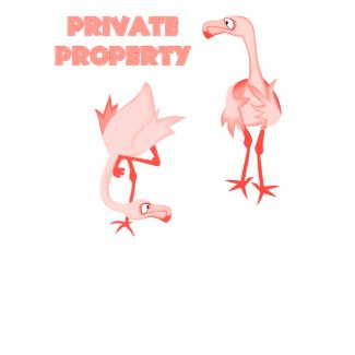 Private Property Flamingos shirt