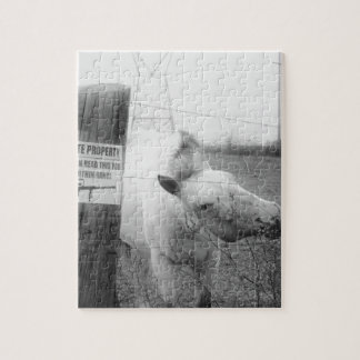 Private Property horse black white Jigsaw Puzzle