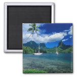 Private yachts anchored in Opunohu Bay on the 2 Inch Square Magnet
