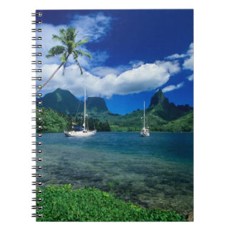 Private yachts anchored in Opunohu Bay on the Spiral Notebook