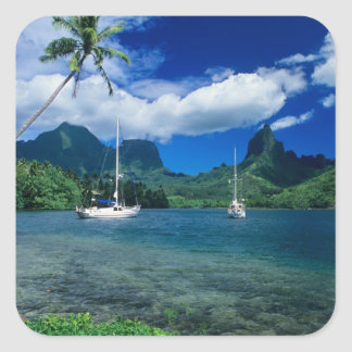 Private yachts anchored in Opunohu Bay on the Square Sticker
