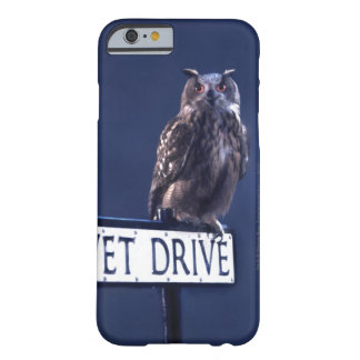 Privet Drive 2 Barely There iPhone 6 Case