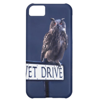 Privet Drive 2 iPhone 5C Case