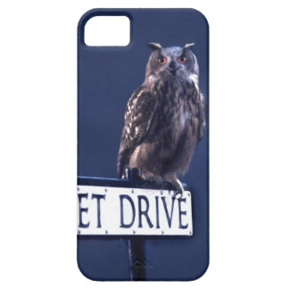 Privet Drive 2 iPhone SE/5/5s Case