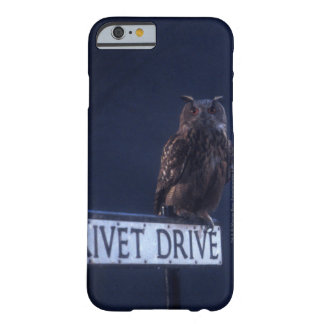 Privet Drive Barely There iPhone 6 Case