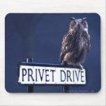 Privet Drive Mouse Pad
