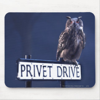 Privet Drive Mouse Pads