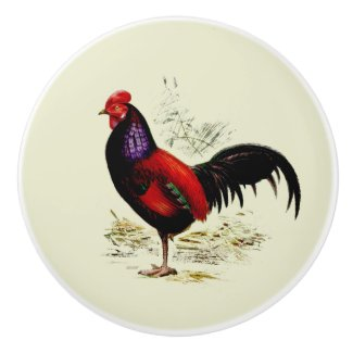 Prize Rooster Left Facing Round Ceramic Knob