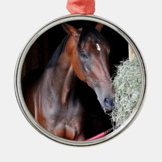 Prize Taker Metal Ornament