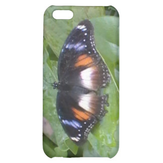 Prized Butterfly iPhone 5C Case