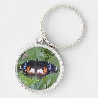 Prized Butterfly Keychain