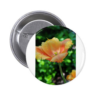 Prized Perennial Button