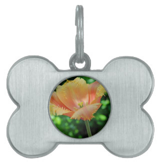 Prized Perennial Pet Tag