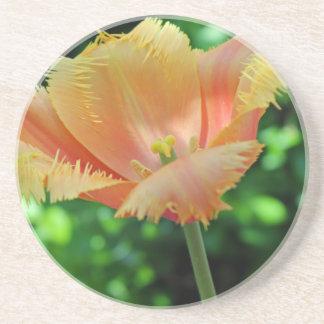 Prized Perennial Sandstone Coaster