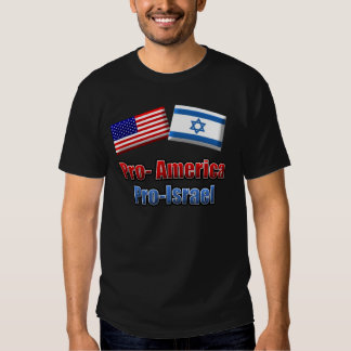 Pro-America/Israel Shirt