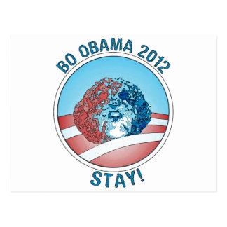 Pro-Bo Obama Dog 2012 Postcard