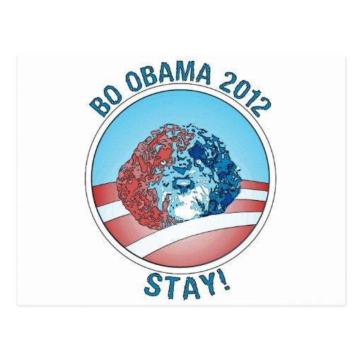Pro-Bo Obama Dog 2012 Post Card