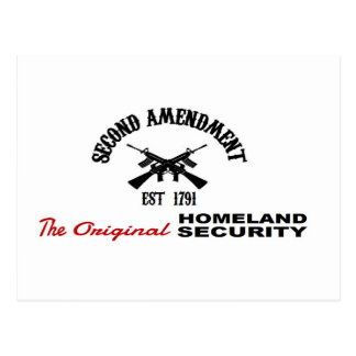 PRO GUN: ORIGINAL HOMELAND SECURITY 2nd AMENDMENT Postcard