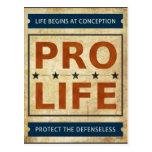Pro Life Billboard Postcard