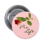 Pro Life Button