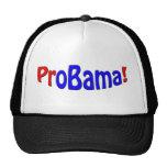 ¡ProBama! Gorra
