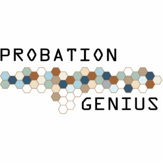 Probation Genius Acrylic Cut Outs