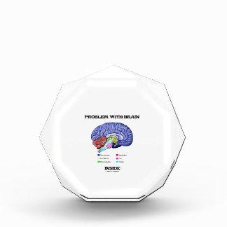Problema con el interior del cerebro (anatomía del