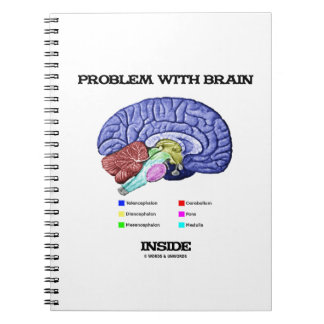 Problema con el interior del cerebro (anatomía del libreta espiral