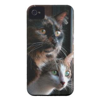 Problema doble iPhone 4 Case-Mate coberturas