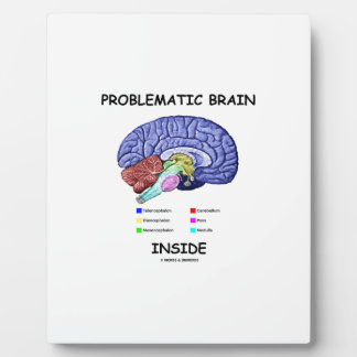 Problematic Brain Inside (Brain Anatomy) Plaque