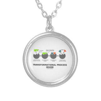 Proceso transformacional dentro del modelo del pendiente personalizado